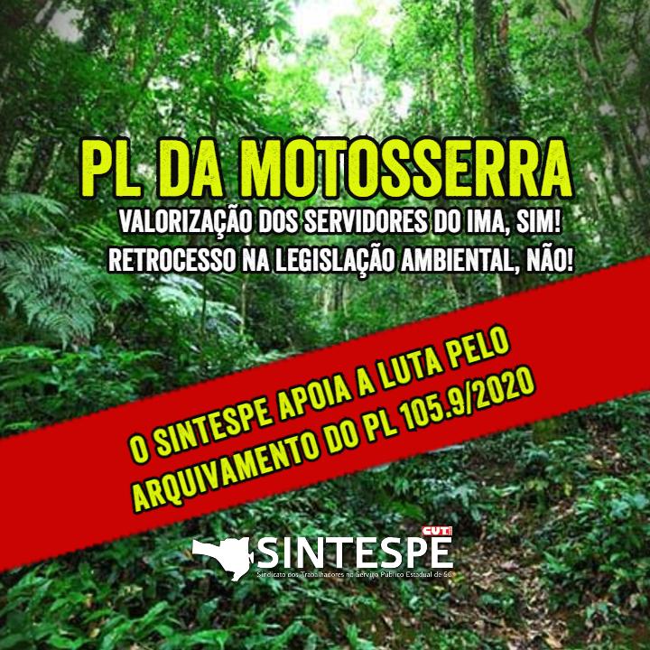 """""""PL da motosserra"""": Avança a luta contra a destruição da Mata Atlântica"""