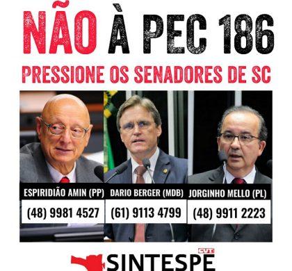 Não à PEC 186: pressione os senadores!
